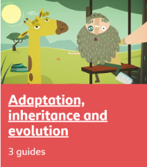 Adaptation and evolution